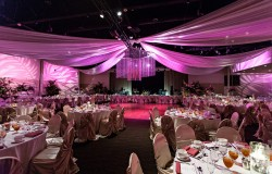 Fuchsia and Champagne Modern Nigerian Tampa Destination Wedding - Tampa Wedding Venue A La Carte Pavilion (6)