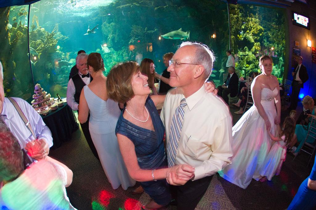 Navy & Pink Tampa Destination Wedding - The Florida Aquarium by Aaron Bornfleth Photographer (32)