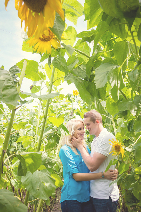 Rustic, Country Brooksville Engagement Session at Sweetfields Farm - Brooksville Wedding Phtographer Ashfall Mixed Media (20)