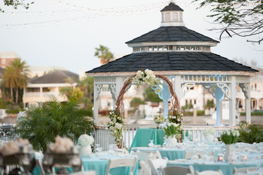 Davis Islands Garden Club Tiffany Blue & Lime Green Wedding - Tampa Wedding Photographer Life's Highlights (23)