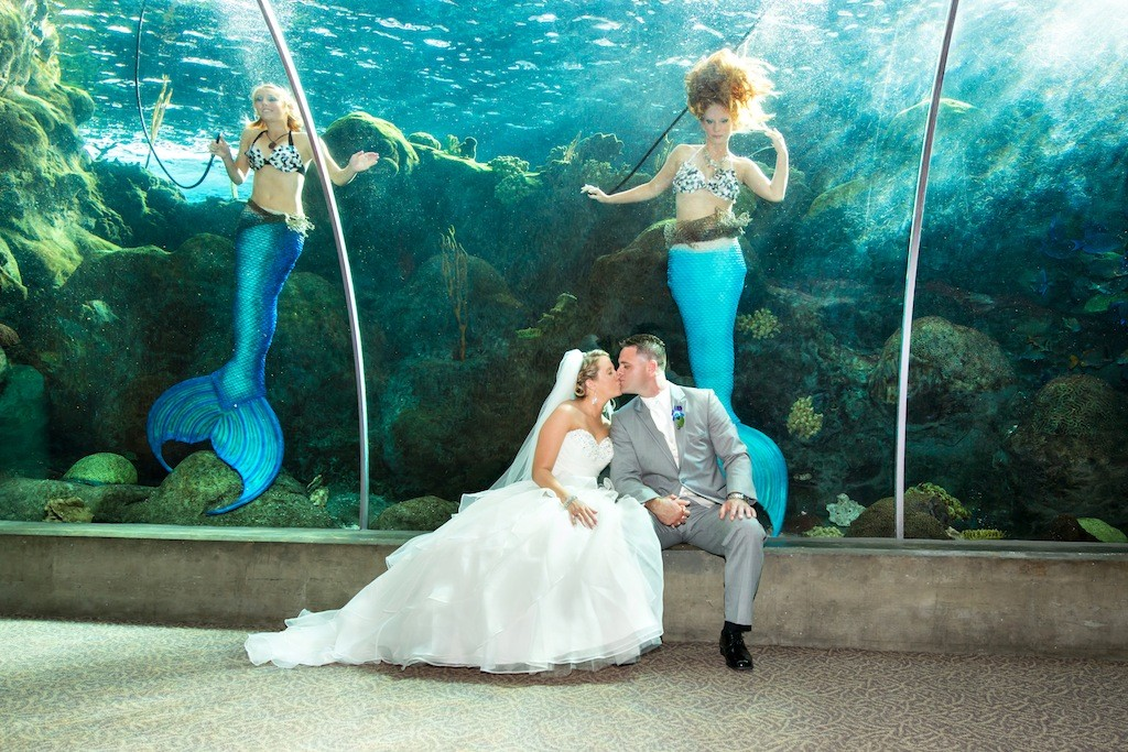 Lime Green & Peacock Blue Tropical Paradise Florida Aquarium Wedding - Tampa Wedding Photographer Captured Images by Augie (17)