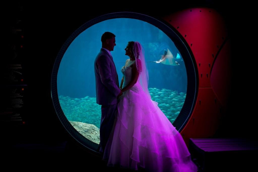 Lime Green & Peacock Blue Tropical Paradise Florida Aquarium Wedding (33)