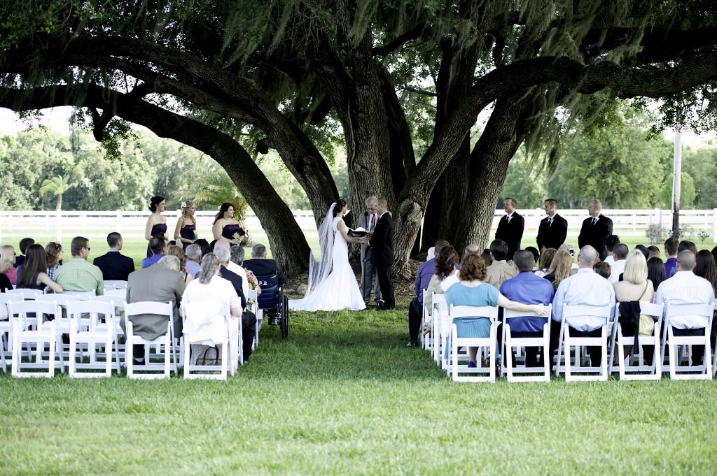 Purple & Grey Rocking H Ranch Wedding - Lakeland Wedding Photographer Pink Lily Photo (12)
