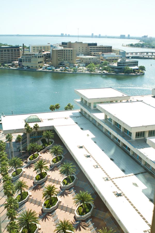 Cobalt Blue and Yellow Florida Aquarium Wedding - Tampa Wedding Photographer Horn Photography and Design (1)