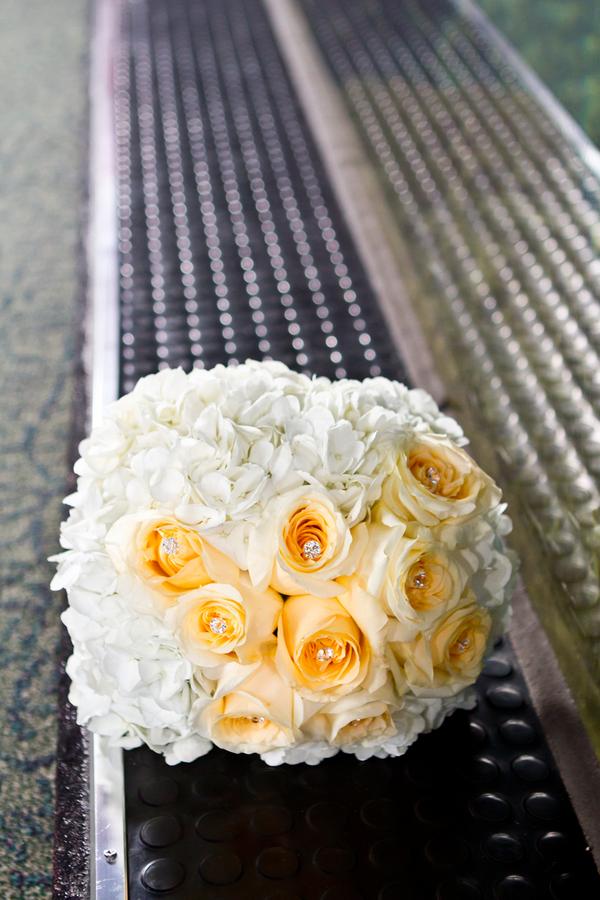 Cobalt Blue and Yellow Florida Aquarium Wedding - Tampa Wedding Photographer Horn Photography and Design (21)