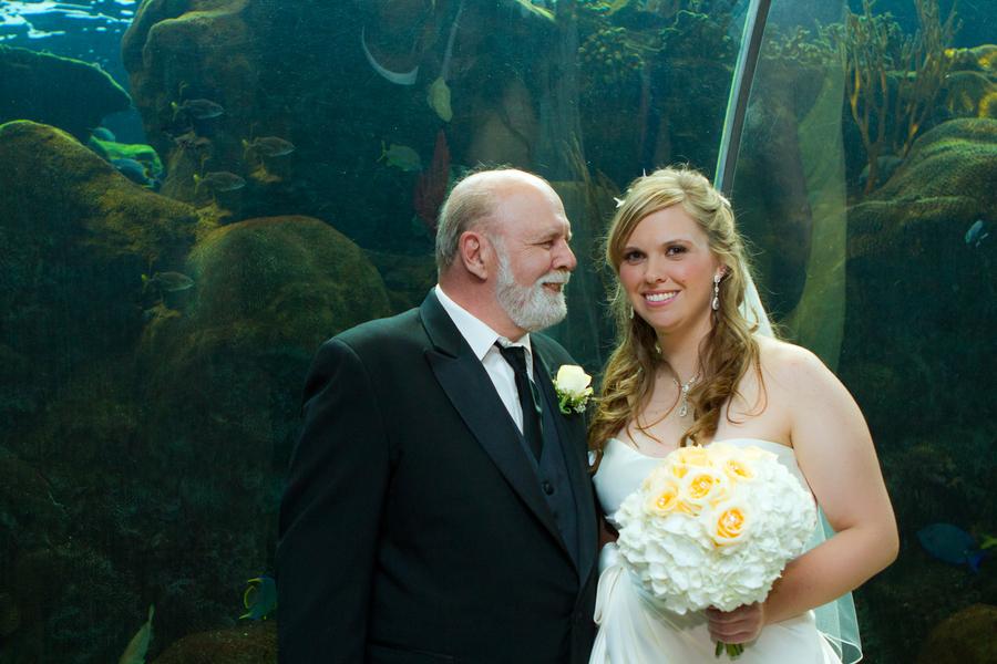 Cobalt Blue and Yellow Florida Aquarium Wedding - Tampa Wedding Photographer Horn Photography and Design (22)