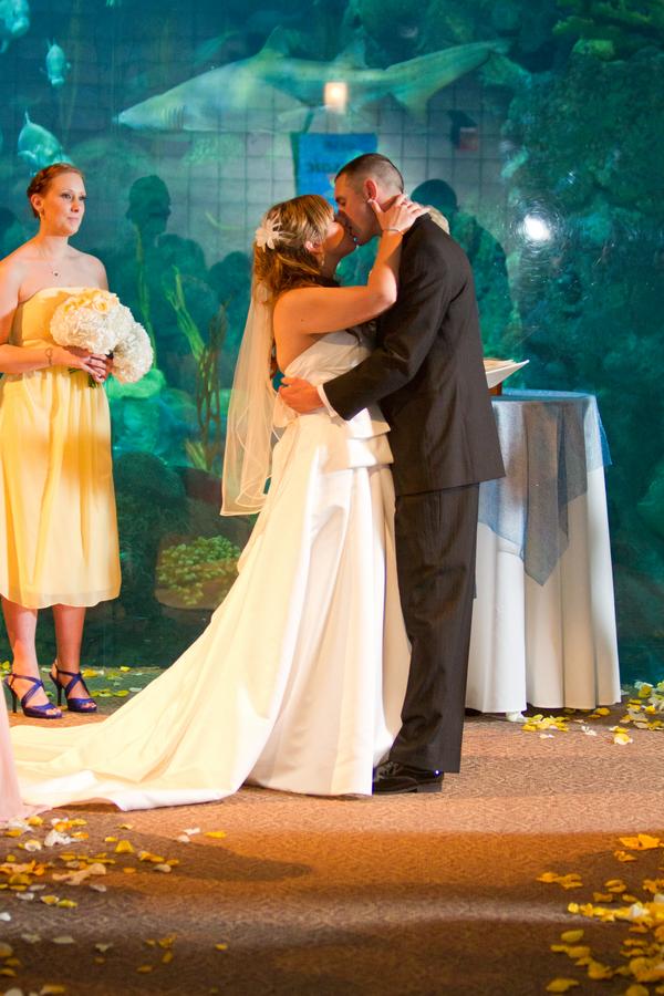 Cobalt Blue and Yellow Florida Aquarium Wedding - Tampa Wedding Photographer Horn Photography and Design (27)