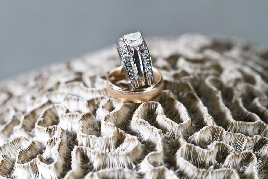 Cobalt Blue and Yellow Florida Aquarium Wedding - Tampa Wedding Photographer Horn Photography and Design (28)