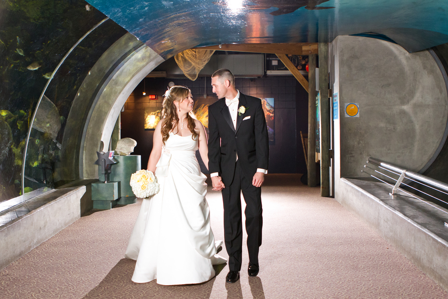 Cobalt Blue and Yellow Florida Aquarium Wedding - Tampa Wedding Photographer Horn Photography and Design (29)