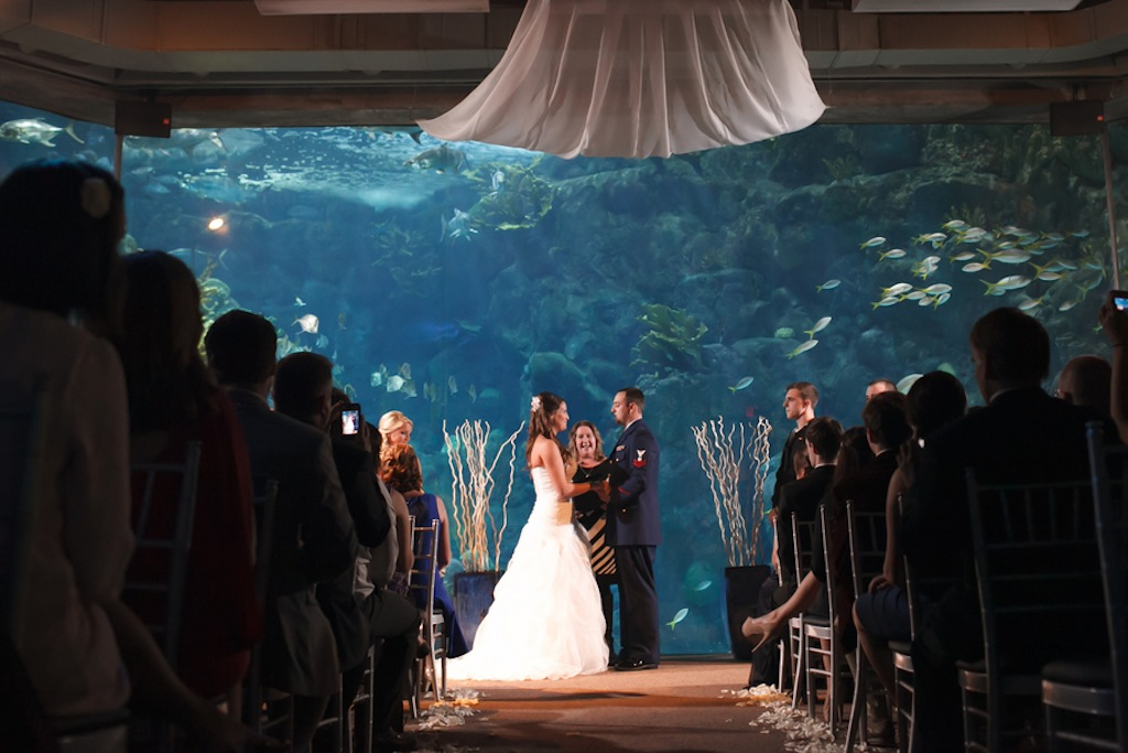 Florida Aquarium Wedding - Downtown Tampa Wedding Venue - Navy Blue & Pink Nautical Wedding (24)