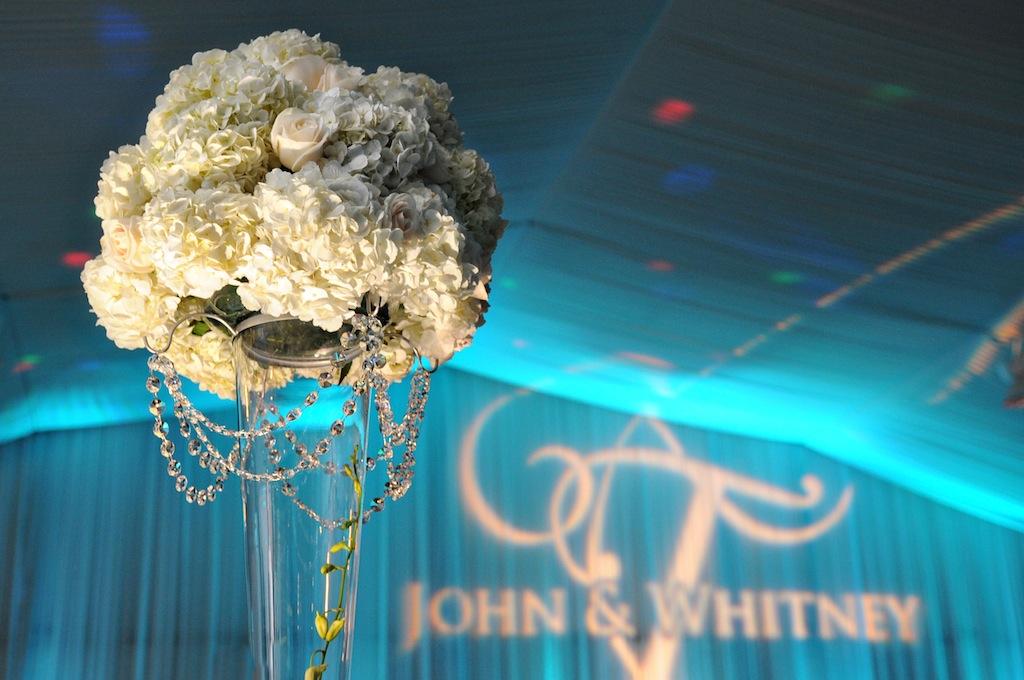 Wedding Venues in St Petersburg, FL - Tradewinds Resort - St. Pete Wedding Photographer Livingston Galleries (28)