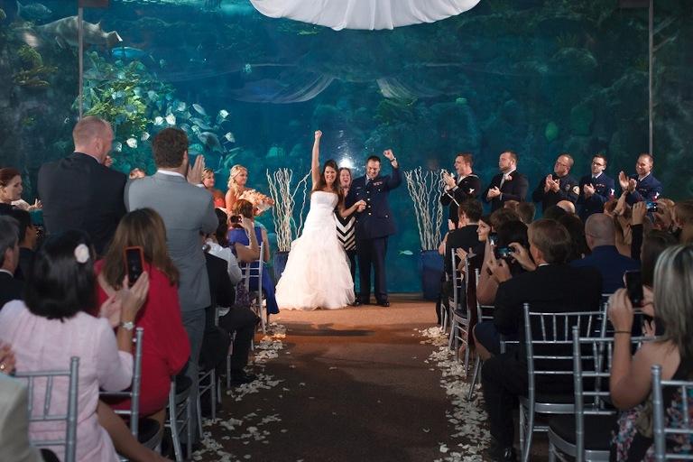 Florida Aquarium Wedding - Unique Tampa Wedding Venue