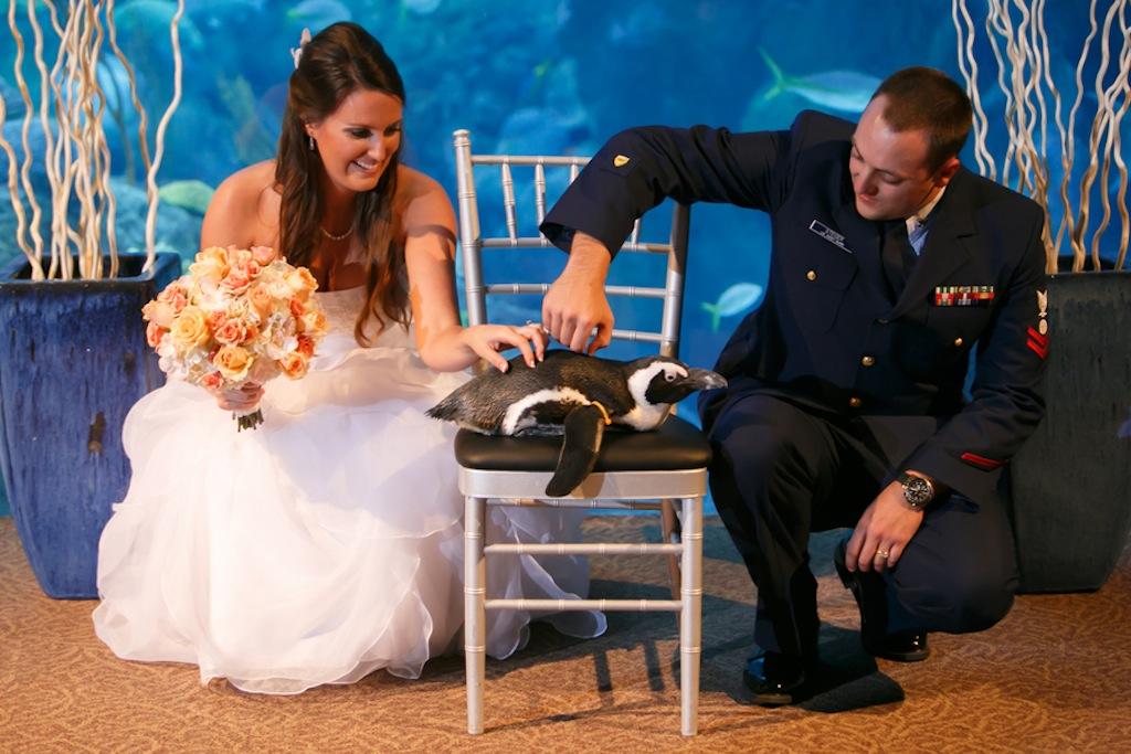 Florida Aquarium Wedding - Downtown Tampa Wedding Venue - Navy Blue & Pink Nautical Wedding (21)