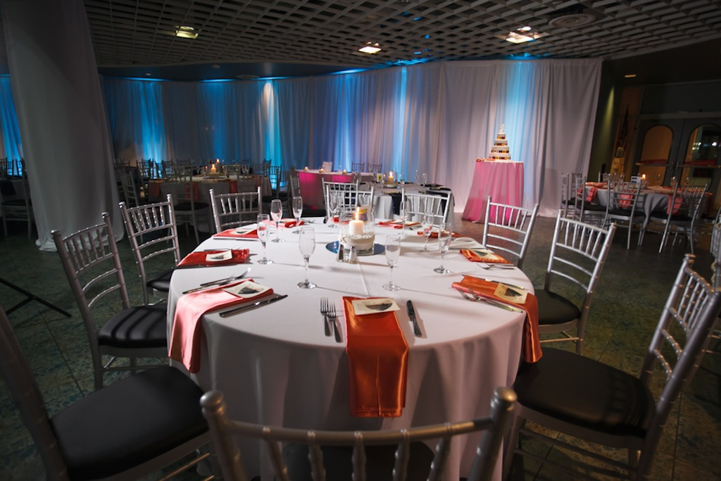 Florida Aquarium Wedding - Downtown Tampa Wedding Venue - Navy Blue & Pink Nautical Wedding (11)