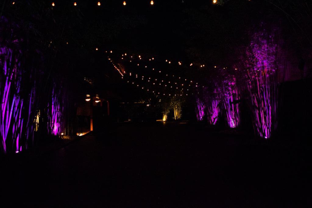 NOVA 535 Wedding - Midsummer Night's Dream Wedding in Downtown St. Pete by 28Pixels Photography (1)