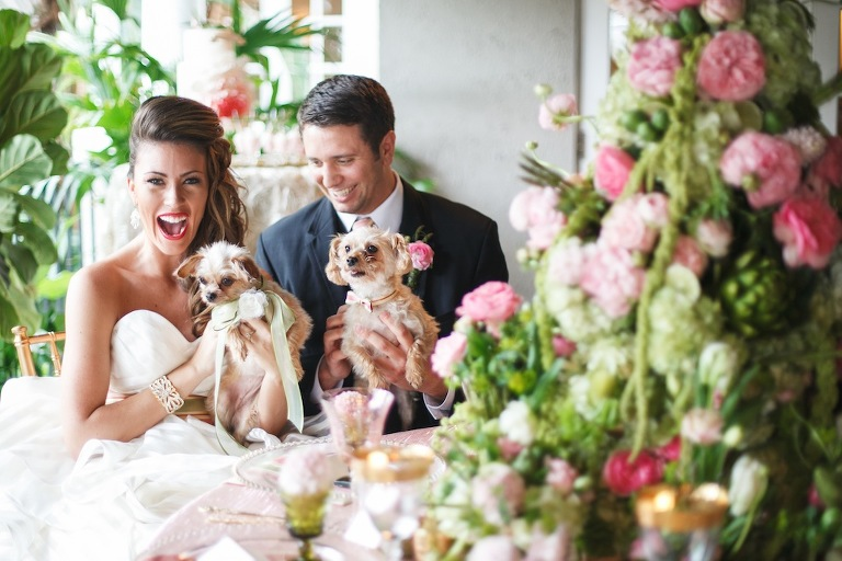 Bride and Groom with Dogs on Wedding Day - Tampa Wedding Photography Carrie Wildes Photography