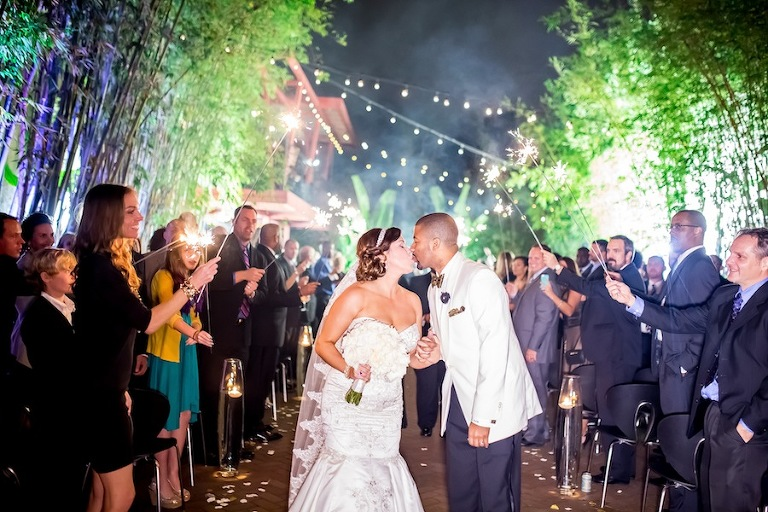 Bride and Groom Walking Down Aisle with Sparkler Exit | NOVA 535