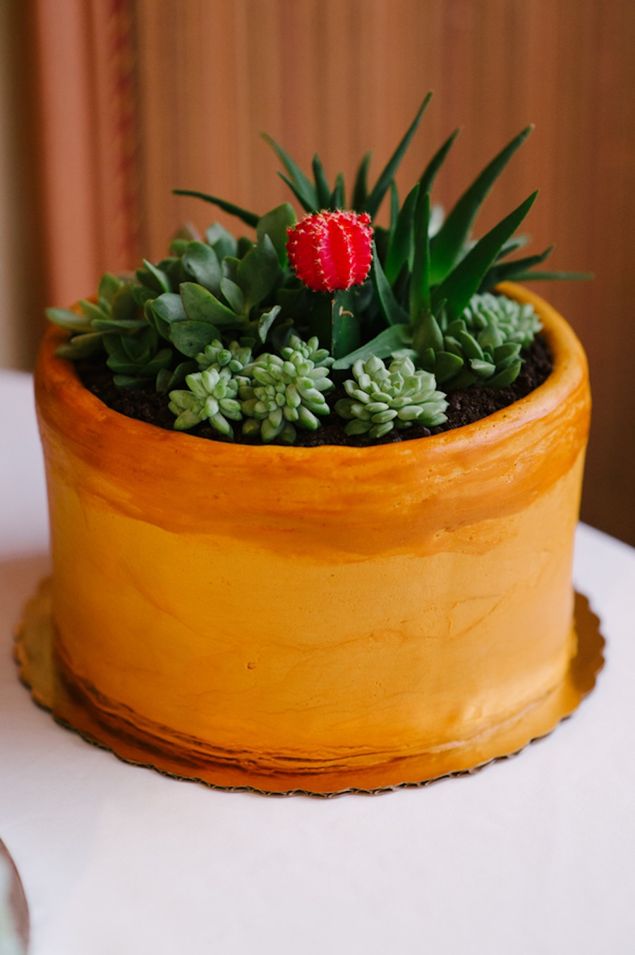 Plant, Cactus Wedding Cake with Succulents