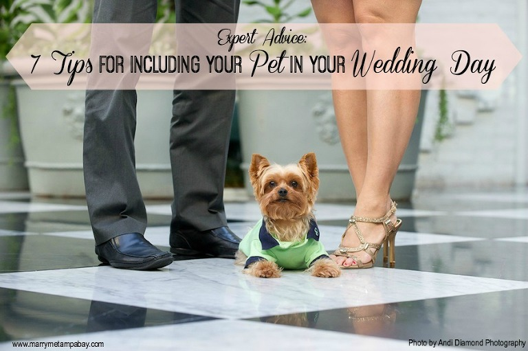 Expert Advice: 7 Tips for Including Your Pet in Your Wedding