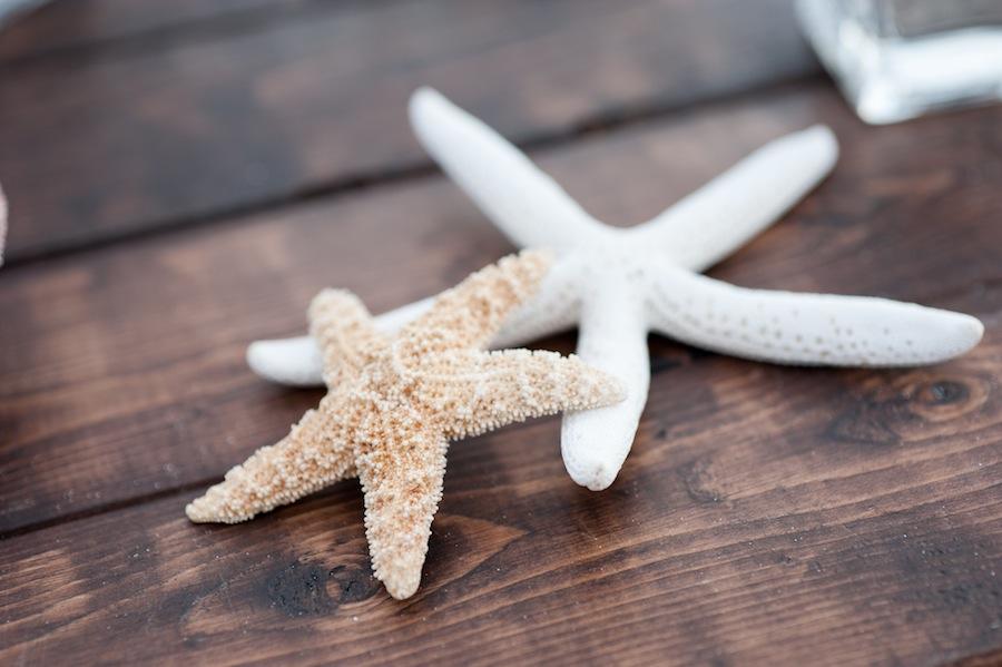 Starfish Beach Wedding Decor