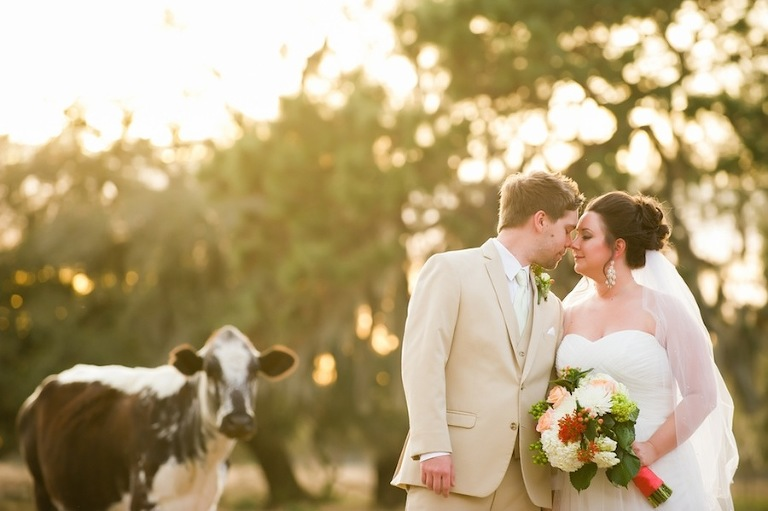 Barn Wedding Archives Marry Me Tampa Bay Local Real Wedding