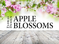 Best South Tampa Wedding Florist | Apple Blossoms Floral Design