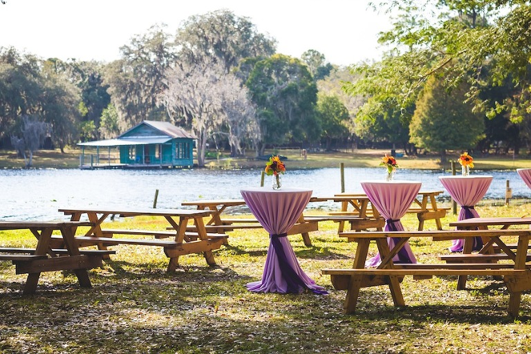 Outdoor Purple Wedding Reception Cocktail Hour Decor with Picnic Tables at Outdoor String Lighting, Tractor, and Cocktail Decor at Outdoor, Rustic Bride and Groom Wedding Portraits | Rustic, Barn Wedding Ceremony | The Barn Crescent Lake at Old McMickey's Farm