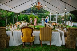 Outdoor, Tented Garden, Botanical Wedding Reception with Vintage Chairs | Tufted Vintage Rentals | Tampa Wedding Venue USF Botanical Gardens