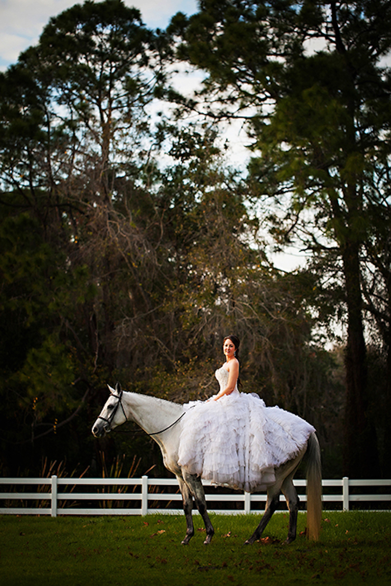 Bride on Horse | Tampa Bay Wedding Photographer Limelight Photography