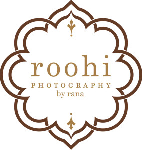 Best St. Pete Wedding Photographer   Roohi Photography