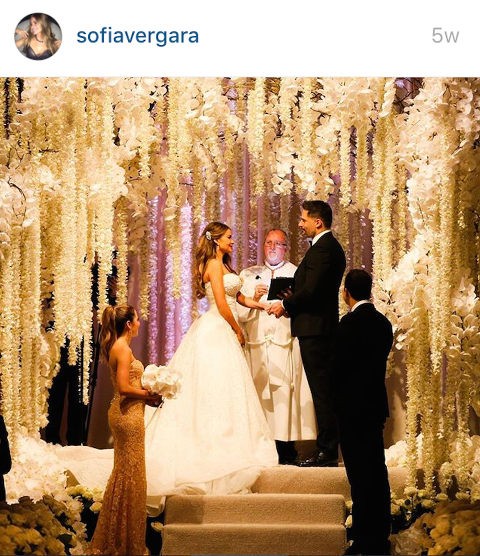 Sofia Vergara and Joe Manganiello Celebrity Wedding 2015