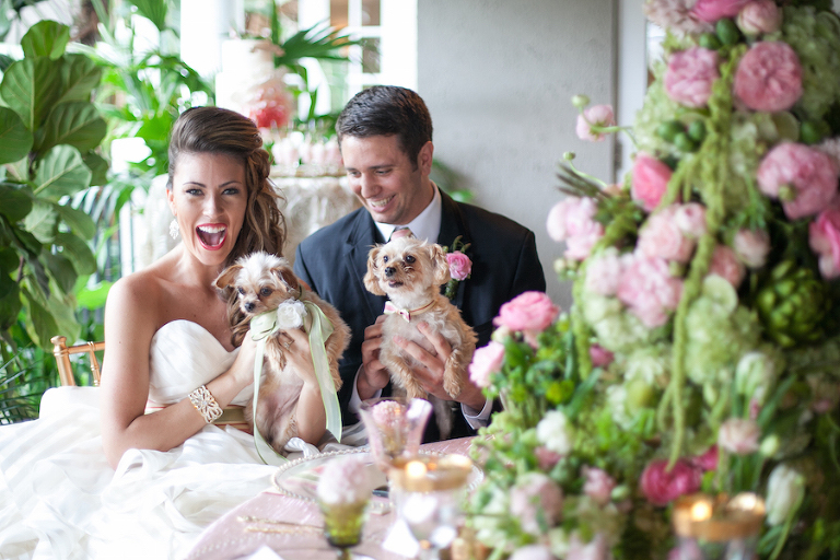 Bride and Groom Wedding Portrait with Pets |Tampa Wedding Photographer | Carrie Wildes Photography