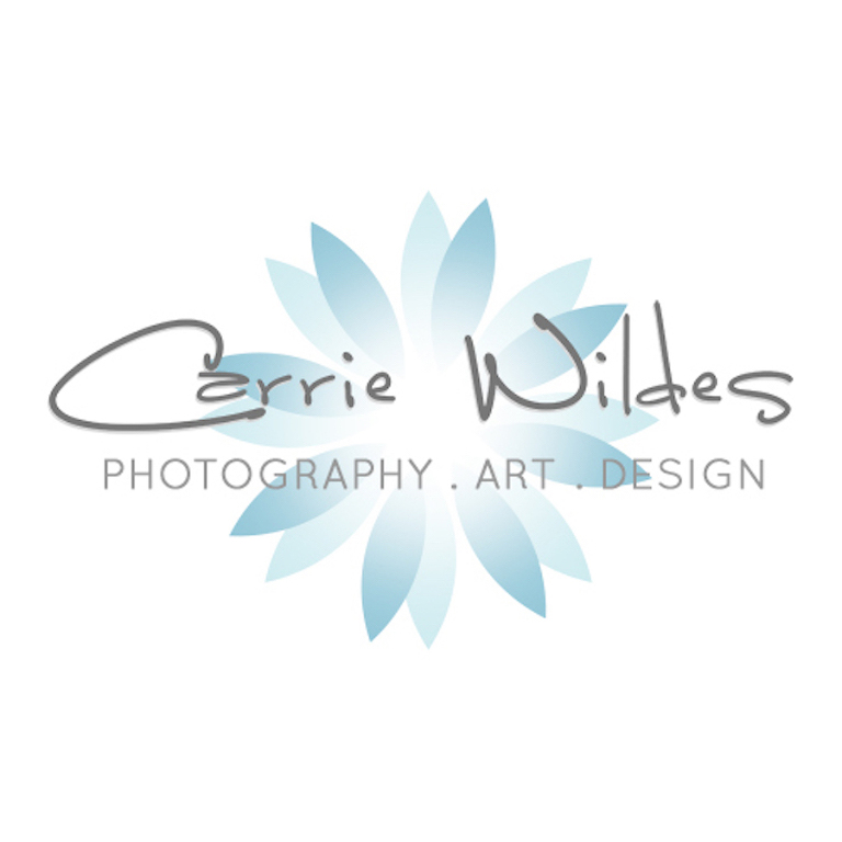 Tampa Wedding Photographer | Carrie Wildes Photography