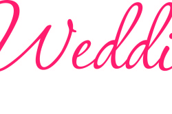 Tampa Bay Bridal Show in St. Petersburg Perfect Wedding Guide February 7,2016