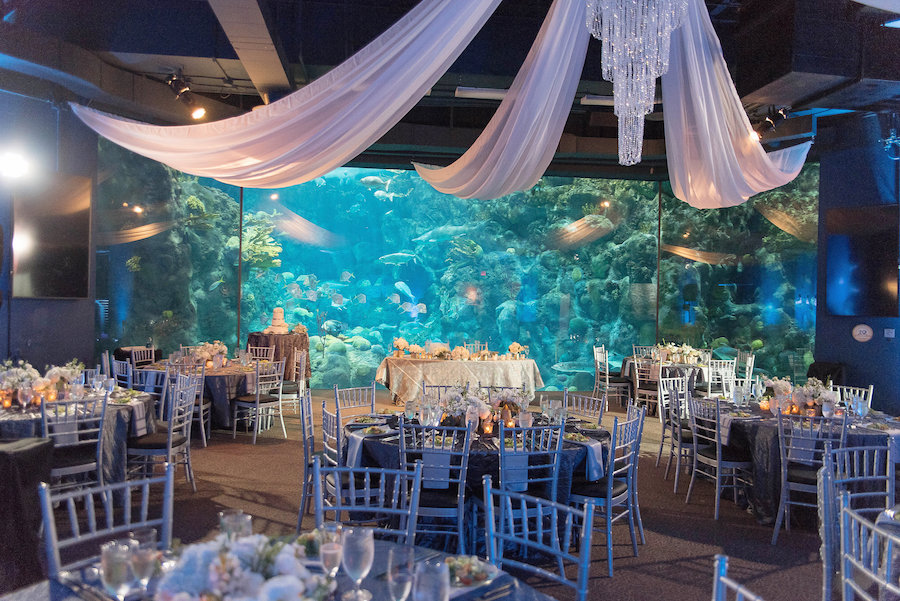 Under the Sea Fish Tank Wedding with Chivari Chairs and Ceiling Draping | Unique Tampa Bay Wedding Reception| Florida Wedding Venue| Unique Downtown Tampa Wedding Venue the Florida Aquarium | Photo by Tampa Bay Wedding Photographer Kristen Marie Photography