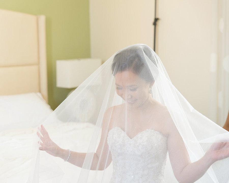 Bridal Portrait in Strapless Essense of Australia Wedding Dress with Veil | Photo by Tampa Bay Wedding Photographer Kristen Marie Photography
