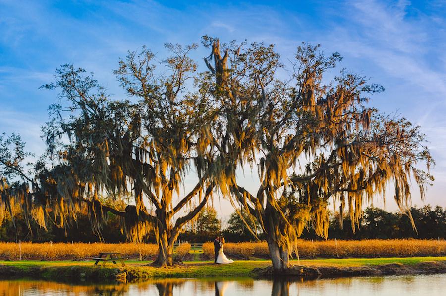 Outdoor, Lake Front Bride and Groom Wedding Portrait Under Tree | Tampa Bay Wedding Venue Wishing Well Barn