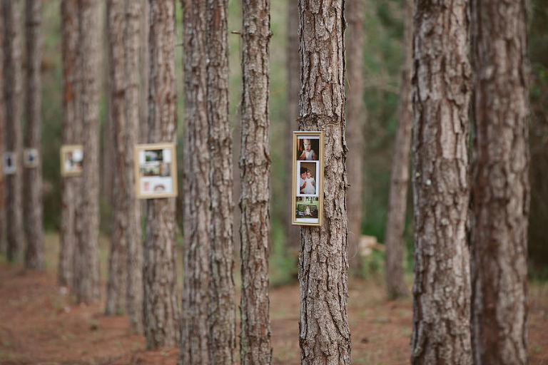 Land O Lakes Rustic Glam Wedding In The Woods
