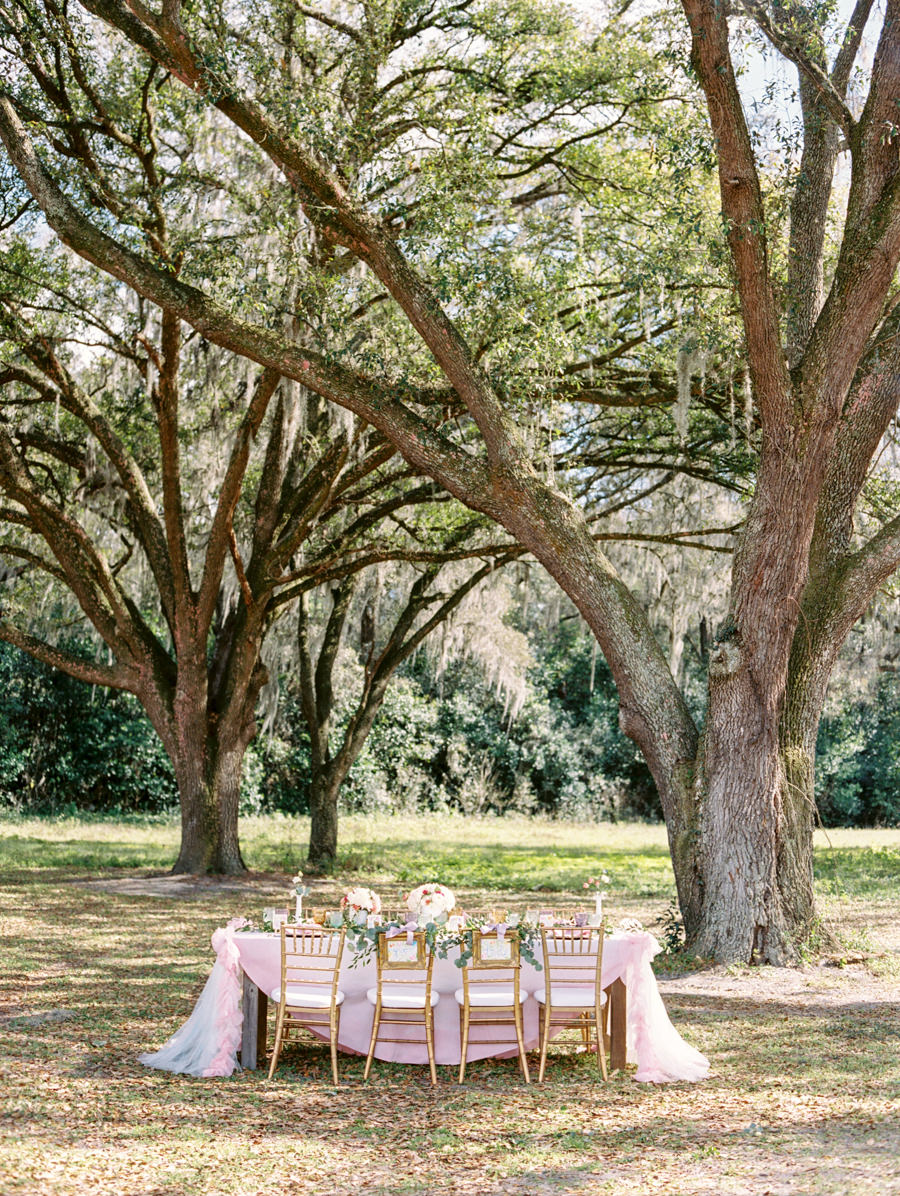 Outdoor Tampa Wedding Reception Seating Under Live Oak Trees with Pink Draped Tablecloth and Gold Chiavari Chairs | Tampa Wedding Rental Chairs by Signature Event Rentals