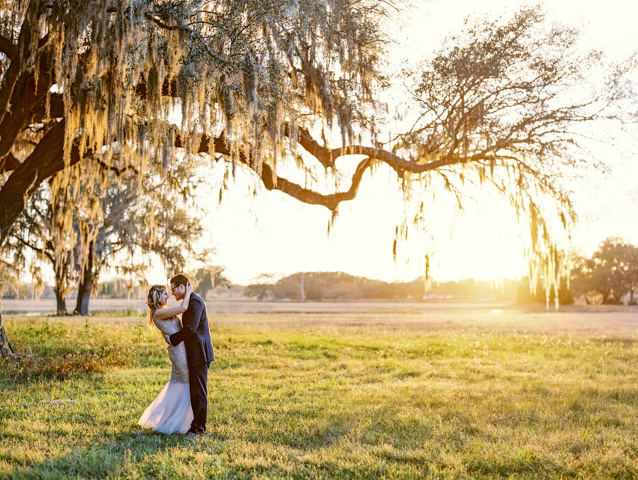 Bride and Groom Outdoor Tampa Sunset Wedding Portrait in Meadow of Greenery with Oak Trees