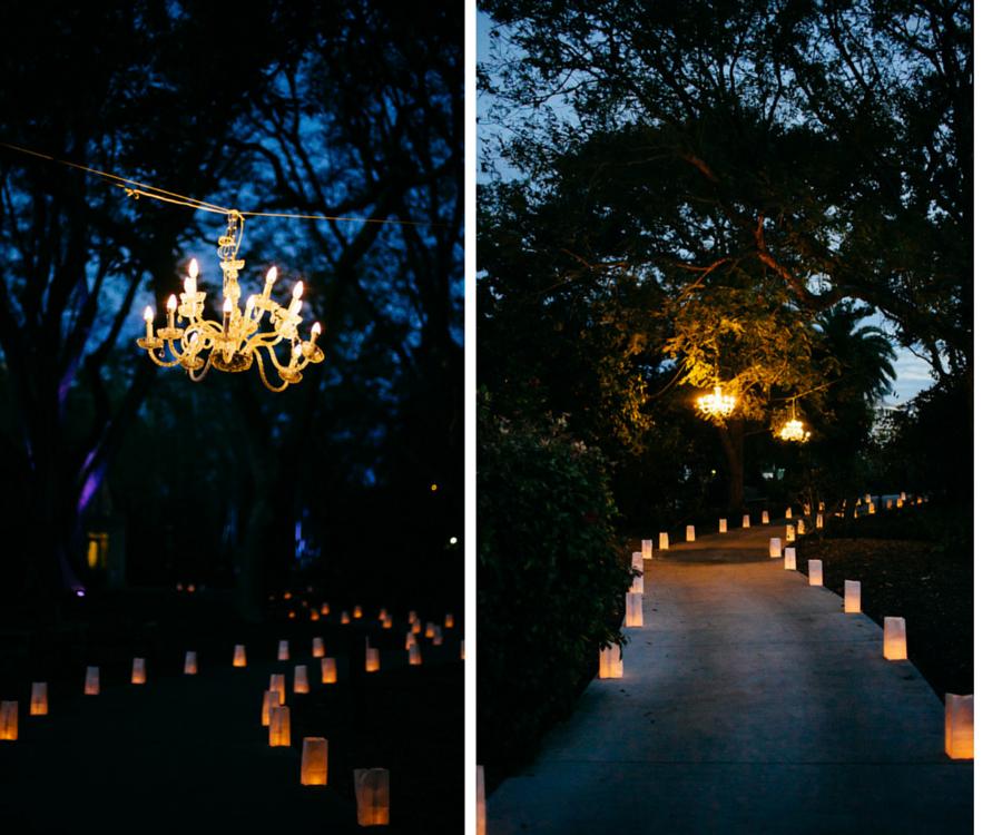 Nighttime, Wedding Chandeliers in Trees and Paper Lantern Walkway | Sarasota Wedding Venue Marie Selby Gardens