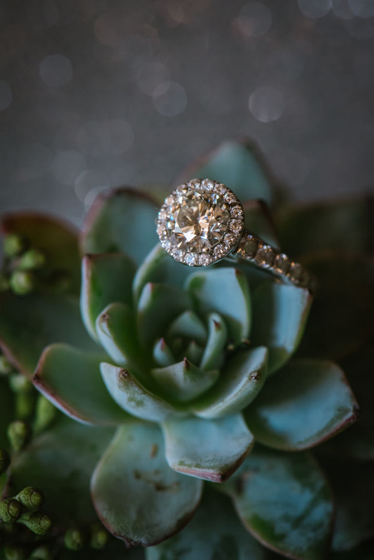Brilliant Cut Engagement Ring with Halo on Succulent Portrait | Round Shaped Diamond Ring With Halo