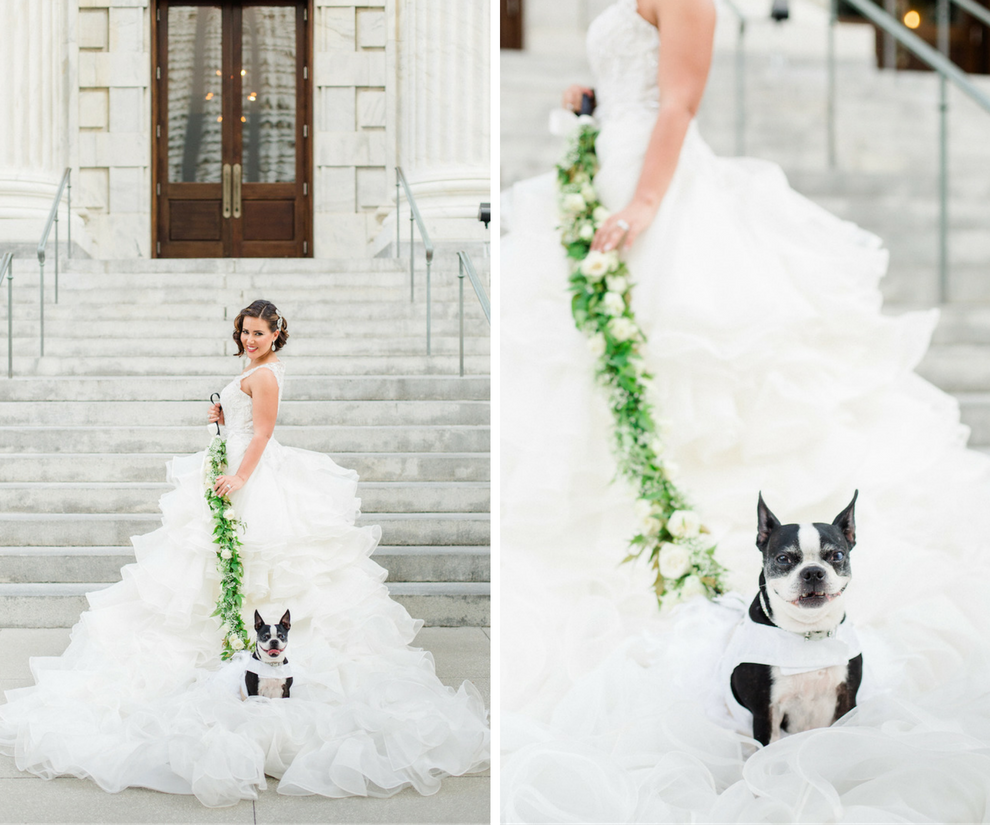 Bridal Portrait in Ines DiSanto Ruffled Mermaid Wedding Dress from Isabel O'Neil Bridal with Pet Dog as Flower Girl | Liana Fuente of Arturo Fuente Cigar Wedding | Downtown Tampa Wedding Photographer Ailyn La Torre Photography
