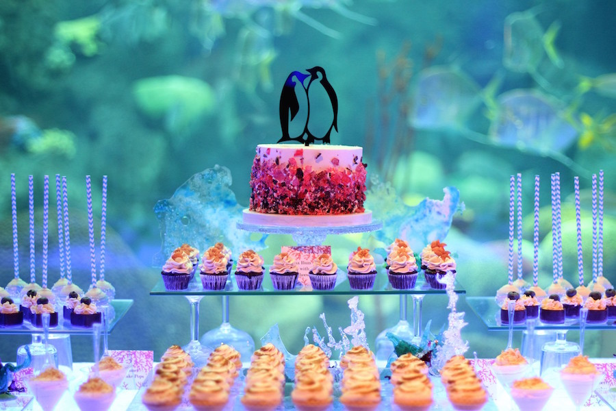 Florida Aquarium Tampa Wedding and Event Dessert Favor Table and Dessert Bar by Hands on Sweets, Tampa Wedding Cake Bakery