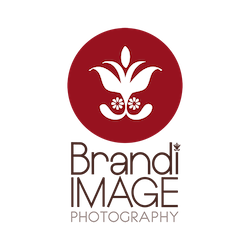 Tampa Bay Wedding Photographer Brandi Image Photography