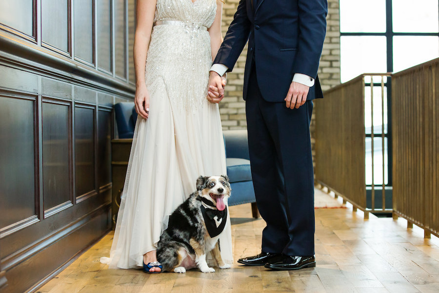Tampa Bride and Groom Wedding Portrait with Pet Dog | Tampa Wedding Pet Sitting by Fairytail Pet Care