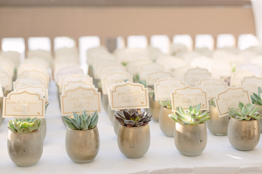 Mini Succulent Table Number Place Cards with Ivory and Gold Name Tags   Unique Wedding Seating Chart Ideas