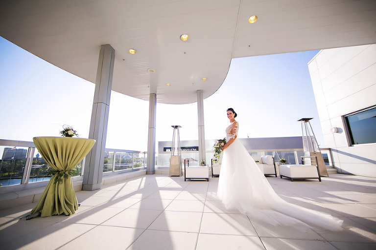 Modern downtown tampa garden wedding glazer 39 s children for Wedding dress shops in tampa fl