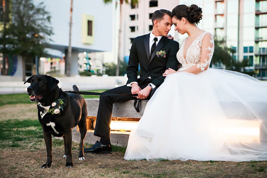 Bride and Groom Downtown Tampa Wedding Portrait with Dog in Tuxedo with Floral Collar | Tampa Bay Wedding Pet Planner Fairytail Pet Care | Wedding Photographer Limelight Photography | Lace Wedding Dress from Bridal Shop Isabel O'Neil Bridal