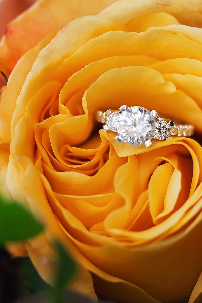 Tampa Bay Wedding Jeweler International Diamond Source Engagement Ring